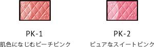 ni_pm_02_01.png